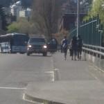 shuttle bus accident in portland oregon