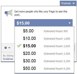 The promote feature allows Facebook users to bypass EdgeRank